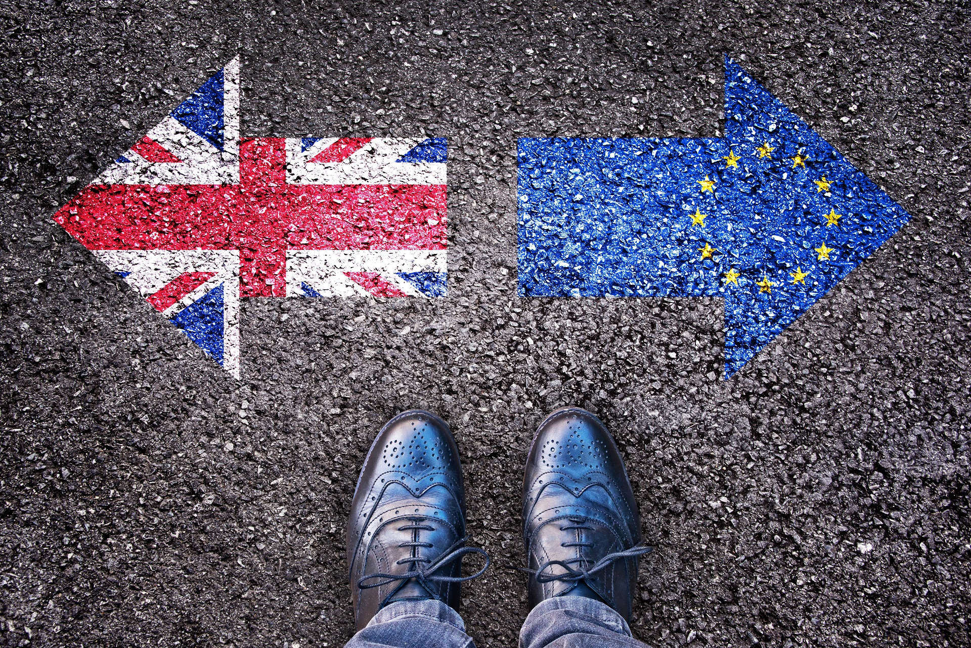 brexit which direction will we go